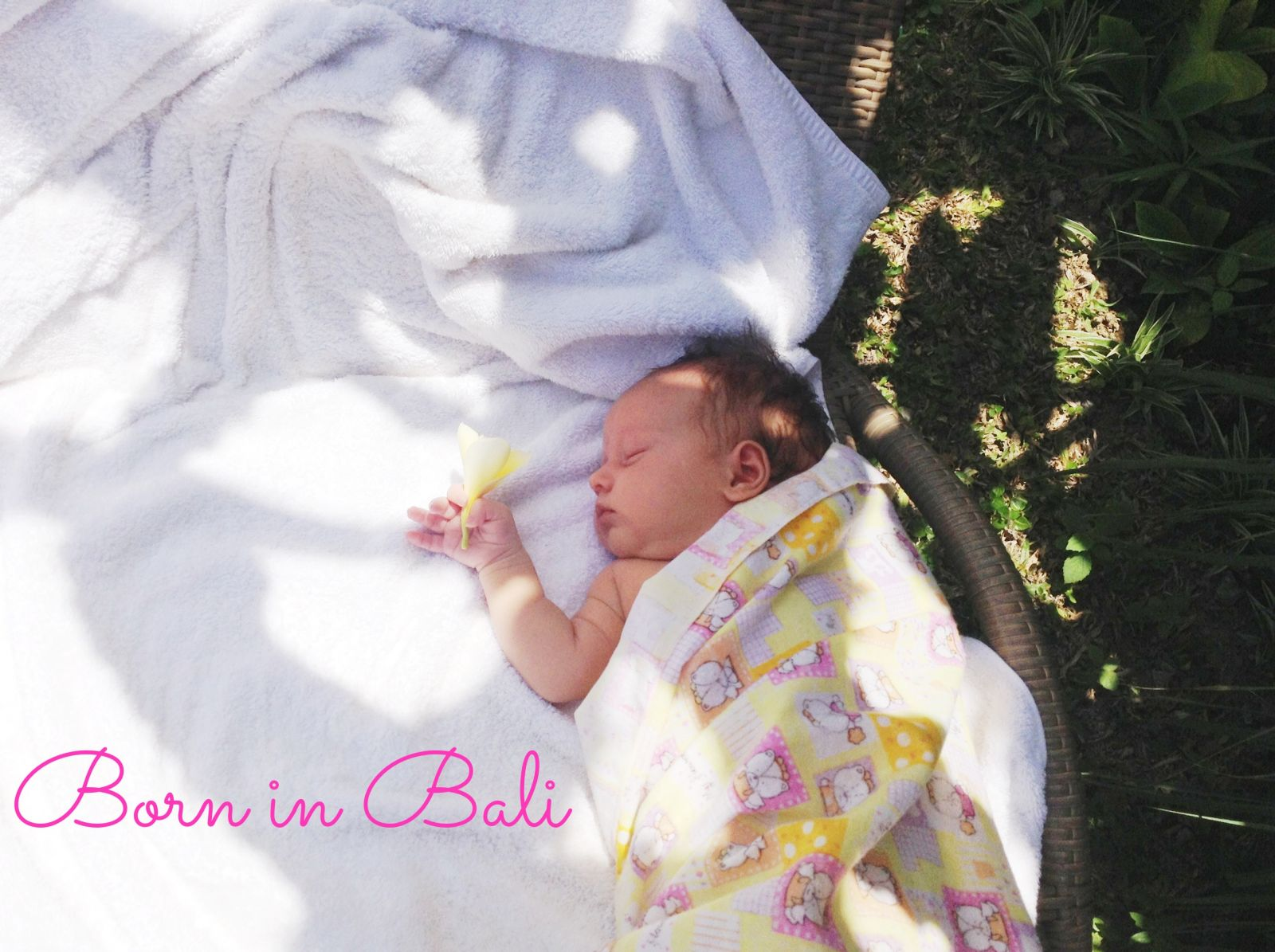 Lotus birth of a child in Bali: the story of a mother - image №3