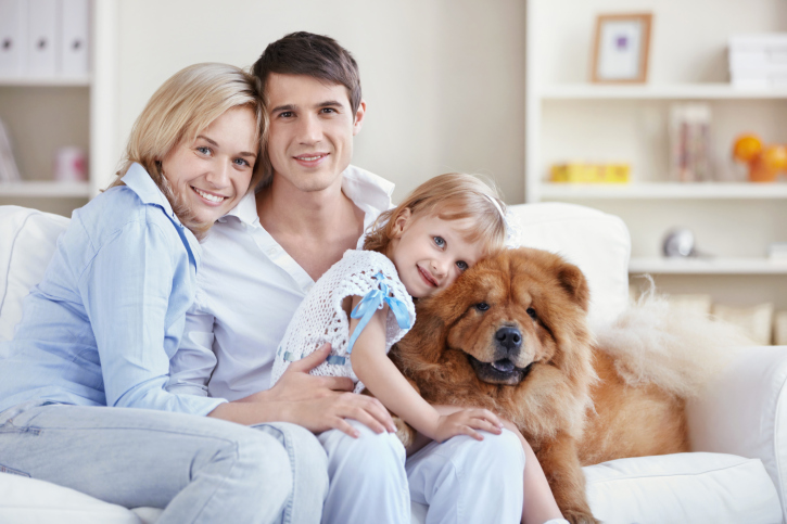 Responsibilities of spouses: how to distribute the load between parents - image №3