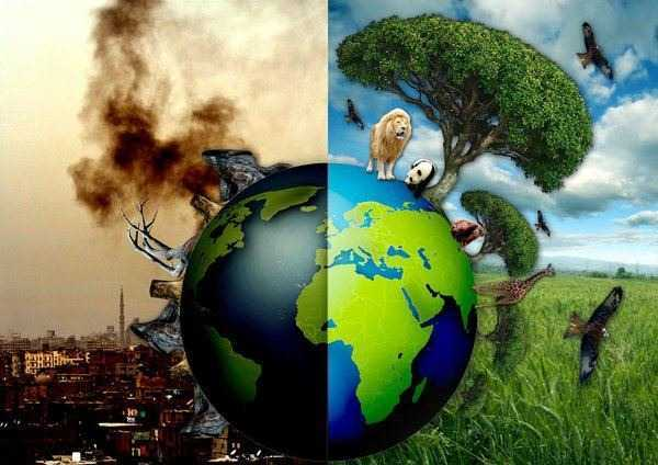 Family ecology: 10 ways to teach a child to preserve the Earth - image №1